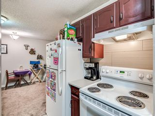 Photo 13: 7 3911 1 Street NE in Calgary: Highland Park Apartment for sale : MLS®# A1059987
