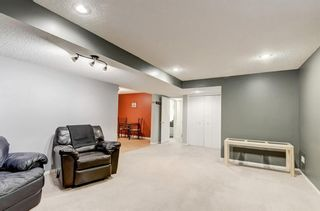 Photo 17: 3007 36 Street SW in Calgary: Killarney/Glengarry Detached for sale : MLS®# A1149415