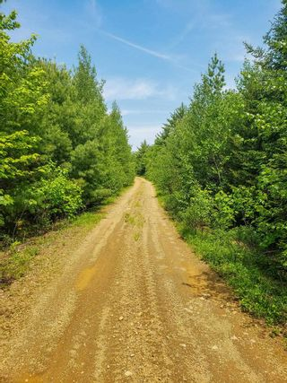 Photo 11: Lot 101 Dorey Mills Road in Clearland: 405-Lunenburg County Vacant Land for sale (South Shore)  : MLS®# 202119645