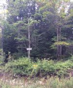 Main Photo: Lot X- 85R Beamish Road in East Uniacke: 105-East Hants/Colchester West Vacant Land for sale (Halifax-Dartmouth)  : MLS®# 202123580
