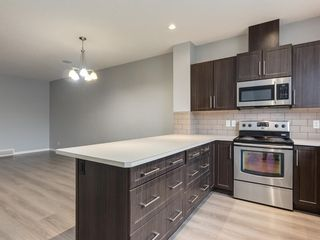 Photo 14: 107 Skyview Point Crescent NE in Calgary: Skyview Ranch Detached for sale : MLS®# A1048632
