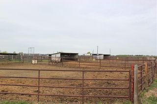 Photo 40: 255122 RANGE ROAD 283 in Rural Rocky View County: Rural Rocky View MD Detached for sale : MLS®# C4299802
