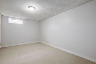 Photo 23: 4115 DOVERBROOK Road SE in Calgary: Dover Detached for sale : MLS®# C4295946