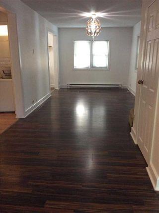 Photo 5: 186 Parkhurst Boulevard in Toronto: Leaside House (Bungalow) for lease (Toronto C11)  : MLS®# C5368729