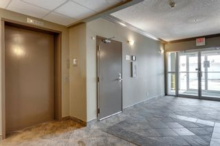 Photo 35: 406 300 Edwards Way NW: Airdrie Apartment for sale : MLS®# A1071313