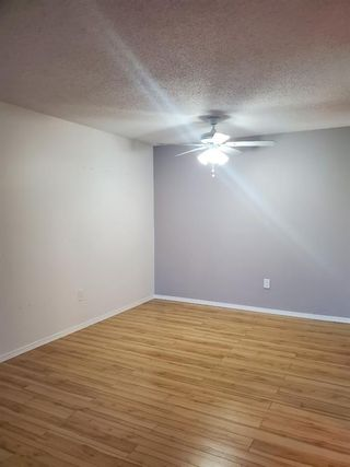 Photo 10: 404 21 Dover Point SE in Calgary: Dover Apartment for sale : MLS®# A1068387
