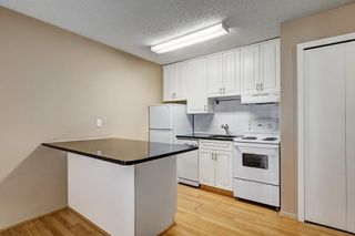 Photo 13: 107 835 19 Avenue SW in Calgary: Lower Mount Royal Condo for sale : MLS®# C4117697