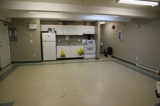 Photo 12: 102 3624 FRASER STREET in Vancouver: Fraser VE Condo for sale (Vancouver East)  : MLS®# R2144581