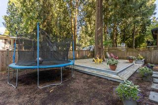 Photo 38: 11670 BONSON Road in Pitt Meadows: South Meadows House for sale : MLS®# R2594010