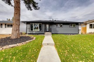 Photo 49: 87 Armstrong Crescent SE in Calgary: Acadia Detached for sale : MLS®# A1152498