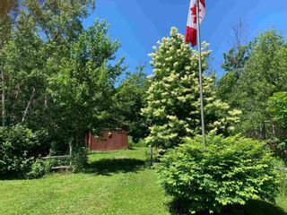 Photo 9: 959 Hardwood Hill Road in Heathbell: 108-Rural Pictou County Residential for sale (Northern Region)  : MLS®# 202116352