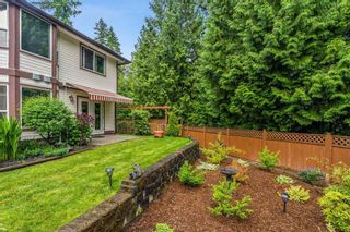 Photo 28: 23706 119 Avenue in Maple Ridge: Cottonwood MR House for sale : MLS®# R2465363