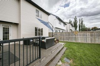 Photo 42: 234 ELGIN View SE in Calgary: McKenzie Towne Detached for sale : MLS®# A1035029