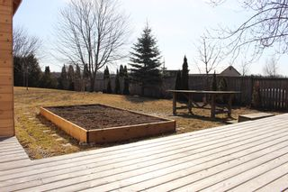 Photo 37: 1180 Ashland Drive in Cobourg: House for sale : MLS®# X5165059
