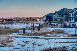 Photo 50: 283 Stonemere Green: Chestermere Detached for sale : MLS®# C4233917