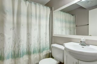 Photo 23: 6912 15 Avenue SE in Calgary: Applewood Park Detached for sale : MLS®# A1068725