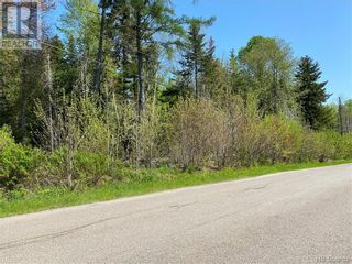 Photo 39: 5264 Rte 770 in Rollingdam: Vacant Land for sale : MLS®# NB058269