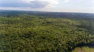 Photo 11: Lots St. Phillips Street in Bridgewater: 405-Lunenburg County Vacant Land for sale (South Shore)  : MLS®# 202115973