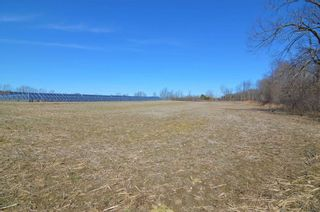 Photo 10: Vl Shelter Valley Road in Cramahe: Rural Cramahe Property for sale : MLS®# X5206281