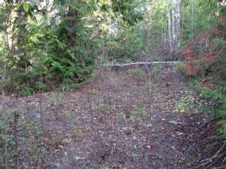 Photo 11: Lot 1 Trans Canada Hwy: Sorrento Land Only for sale (Shuswap)  : MLS®# 10171991