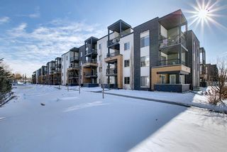 Photo 2: 1214 1317 27 Street SE in Calgary: Albert Park/Radisson Heights Apartment for sale : MLS®# A1070398