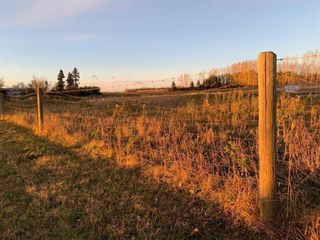 Photo 6: 32530 Range Road 10A: Rural Mountain View County Detached for sale : MLS®# A1107608