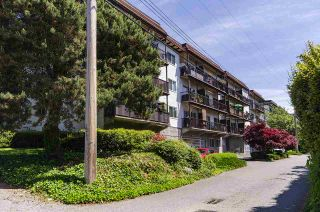 """Photo 30: 204 225 W 3RD Street in North Vancouver: Lower Lonsdale Condo for sale in """"Villa Valencia"""" : MLS®# R2459541"""