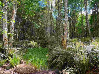 Photo 13: 890 EAGLES REST Lane: Galiano Island Land for sale (Islands-Van. & Gulf)  : MLS®# R2589986