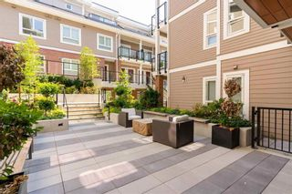 Photo 3: 123 4858 SLOCAN Street in Vancouver: Collingwood VE Townhouse for sale (Vancouver East)  : MLS®# R2566368