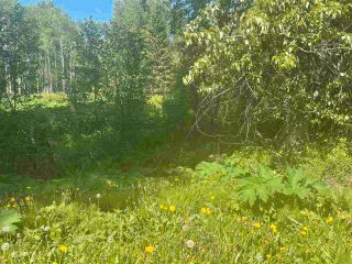 """Photo 9: DL 785 LEE Avenue: Willow River Land for sale in """"Willow River"""" (PG Rural East (Zone 80))  : MLS®# R2589317"""