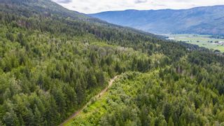 Photo 15: 2550 Southwest 10 Street in Salmon Arm: Foothill SW Vacant Land for sale : MLS®# 10209597
