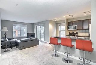 Photo 14: 1214 1317 27 Street SE in Calgary: Albert Park/Radisson Heights Apartment for sale : MLS®# A1142395
