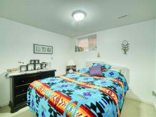 Photo 17: 24196 102B Avenue in Maple Ridge: Albion House for sale : MLS®# R2480397