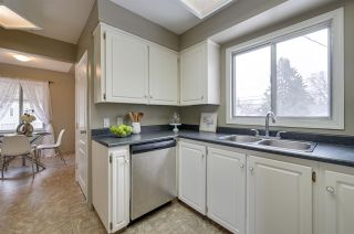 Photo 18: 9648 69 Avenue in Edmonton: Zone 17 House for sale : MLS®# E4236073