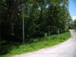 Photo 3: 4128 Fountain Drive in Ramara: Rural Ramara Property for sale : MLS®# X3531612