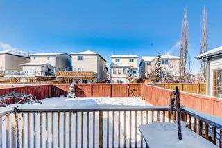 Photo 20: 382 Tuscany Drive NW in Calgary: Tuscany Detached for sale : MLS®# A1069090