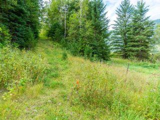 Photo 56: 5980 HEFFLEY-LOUIS CREEK Road in Kamloops: Heffley House for sale : MLS®# 160771