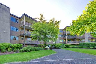 """Photo 28: 214 10662 151A Street in Surrey: Guildford Condo for sale in """"Lincoln Hill"""" (North Surrey)  : MLS®# R2501771"""