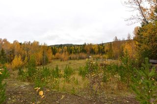 Photo 17: LOT A 37 Highway: Kitwanga Land for sale (Smithers And Area (Zone 54))  : MLS®# R2506362