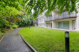 Photo 2: 211 7139 18TH AVENUE in Burnaby: Edmonds BE Condo for sale (Burnaby East)  : MLS®# R2468004