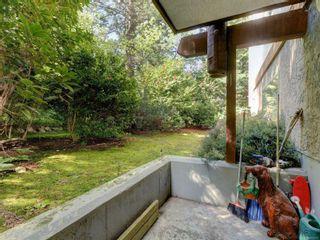 Photo 2: 105 1005 McKenzie Ave in : SE Quadra Condo for sale (Saanich East)  : MLS®# 874711