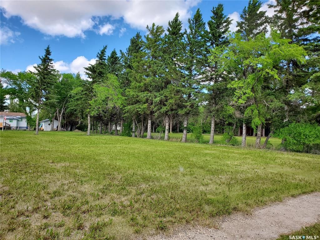Main Photo: 110 McCallum Street in Rose Valley: Lot/Land for sale : MLS®# SK860592