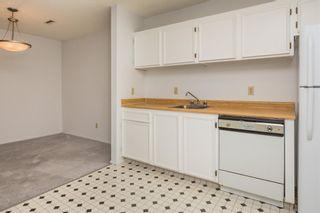 Photo 13: 1162 Saddleback Road in Edmonton: Zone 16 Carriage for sale : MLS®# E4256604