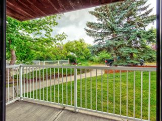 Photo 27: 109 3606 Erlton Court SW in Calgary: Parkhill Apartment for sale : MLS®# A1136859