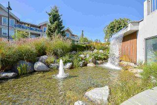 "Photo 40: 401 6440 194 Street in Surrey: Clayton Condo for sale in ""WATERSTONE"" (Cloverdale)  : MLS®# R2578051"