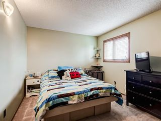 Photo 31: 216 MT COPPER Park SE in Calgary: McKenzie Lake Detached for sale : MLS®# A1025995