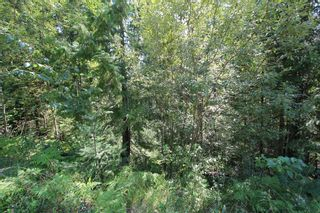Photo 2: Lot 91 Anglemont Way in Anglemont: Land Only for sale (Shuswap)  : MLS®# 10069930