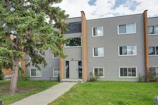 Photo 1: 302 3522 44 Street SW in Calgary: Glenbrook Apartment for sale : MLS®# A1122030