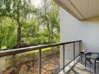 Photo 18: 206 2747 Quadra St in : Vi Hillside Condo for sale (Victoria)  : MLS®# 875020