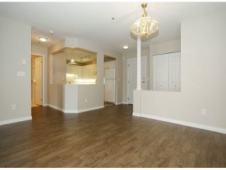 """Photo 30: 205 5556 201A Street in Langley: Langley City Condo for sale in """"Michaud Gardens"""" : MLS®# F1321121"""
